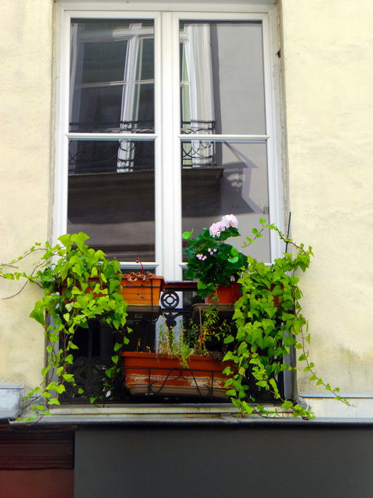 WINDOWBOXES14-2-5