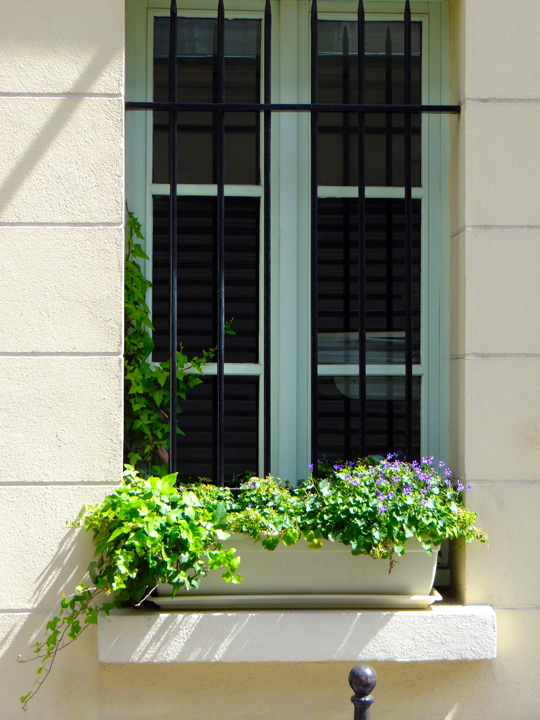 WINDOWBOXES14-2-8