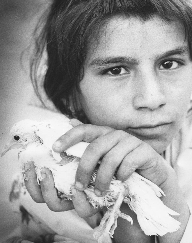 Afghanistan_©MeredithMullins