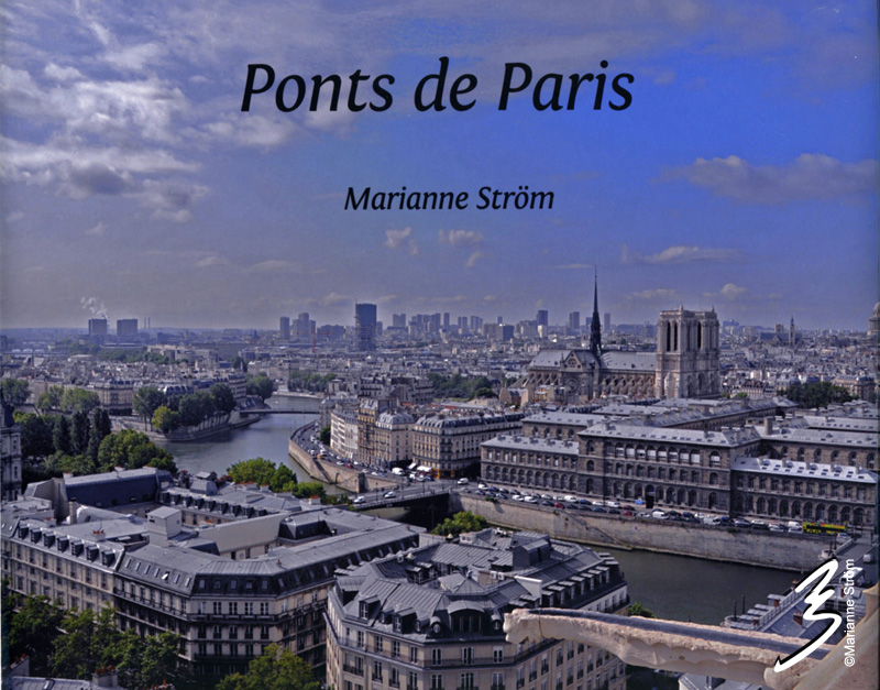 Ponts_de_Paris2