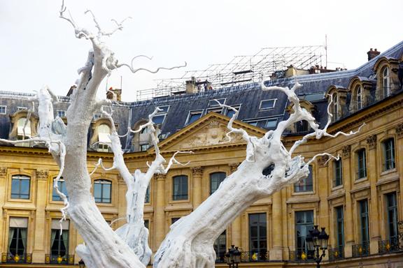 PVENDOME TREES-8