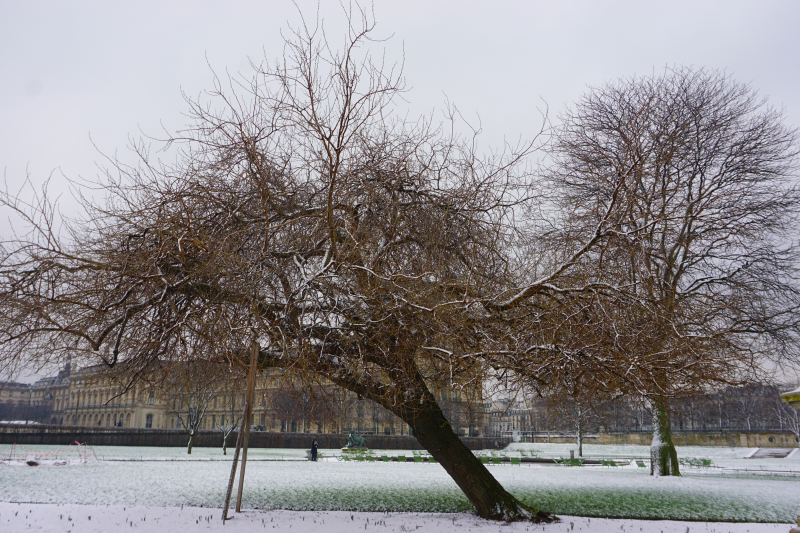 TUILERIES SNOW-12
