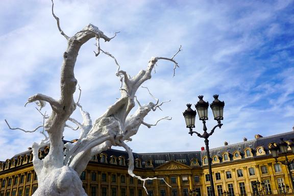 PVENDOME TREES-3