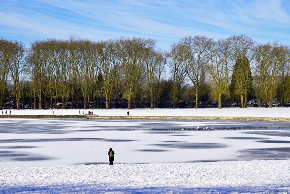 VERSAILLES SNOW-4