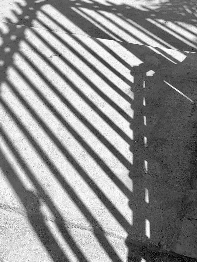 SHADOW TUILERIES-2