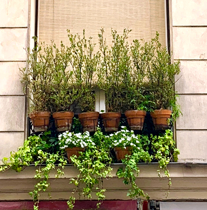 WINDOW BOX2-6