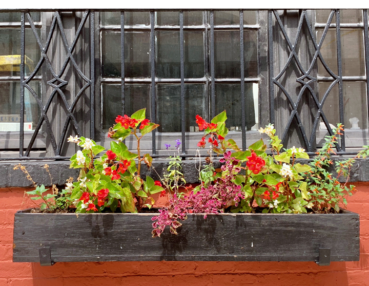 NYC WINDOW BOX-1