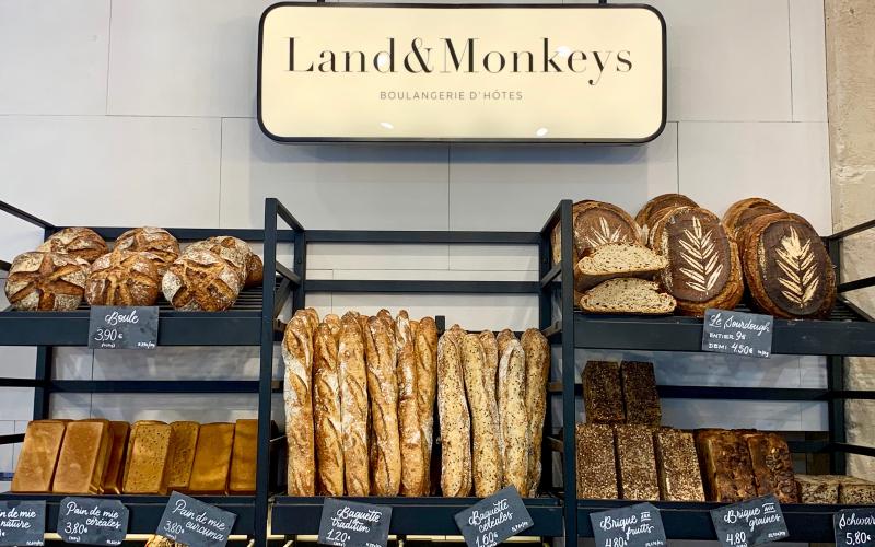 LAND & MONKEY-6