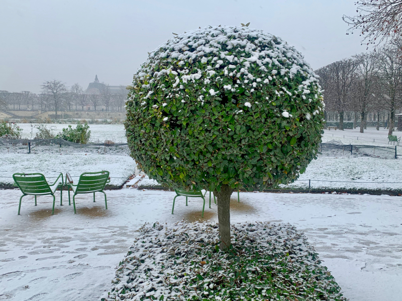 SNOW2021-1